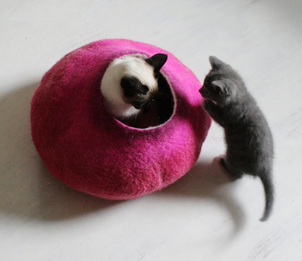 05 cat bed