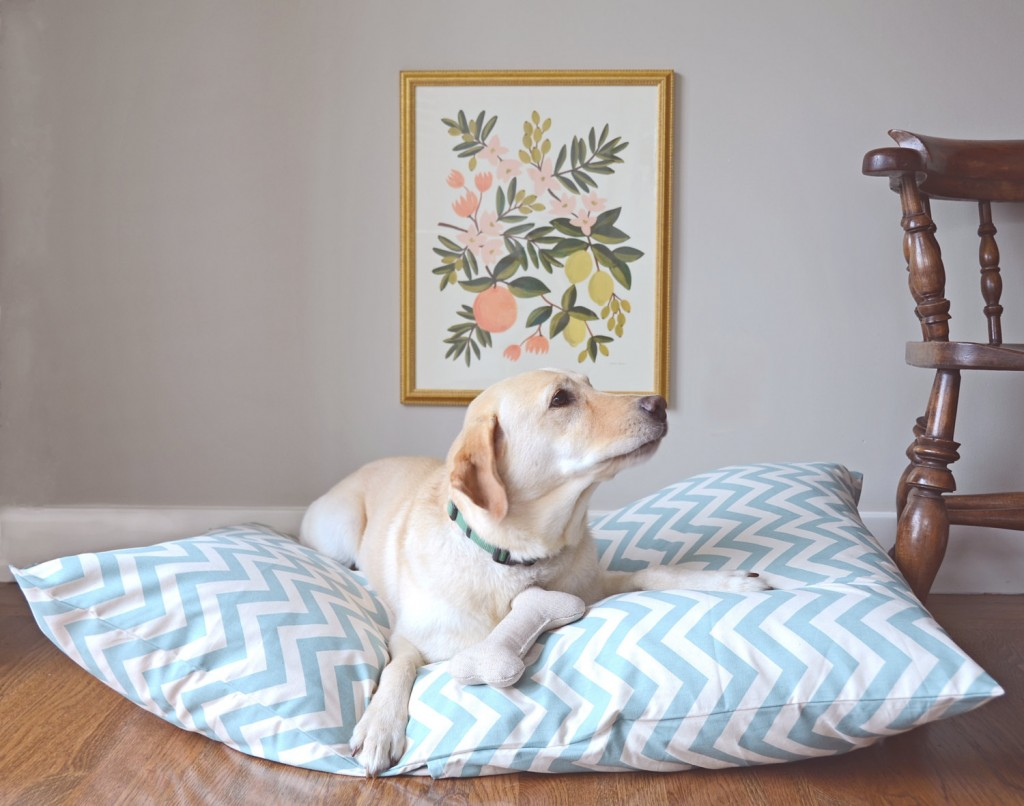 01 Large Dog Bed Cover