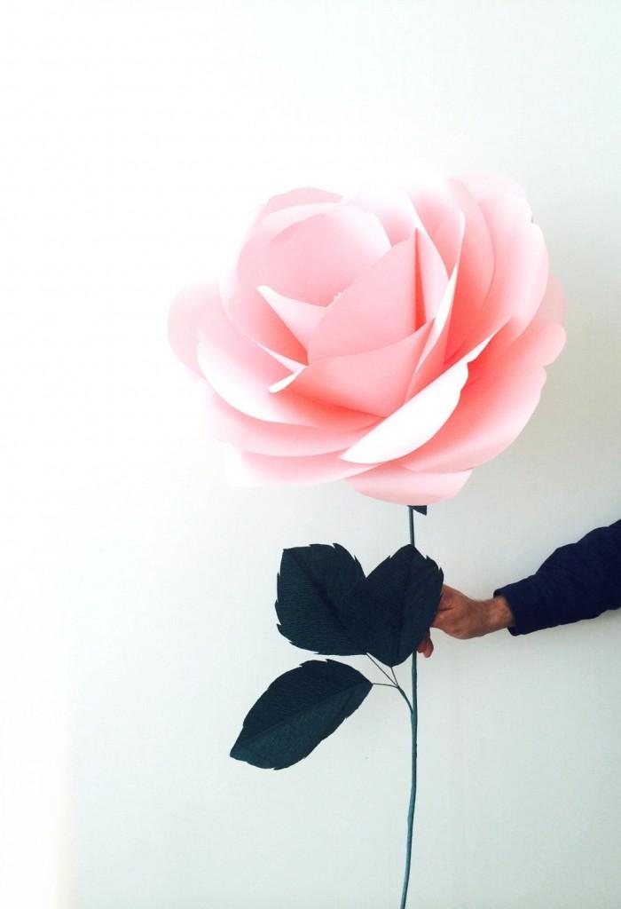5 Big Paper Flower