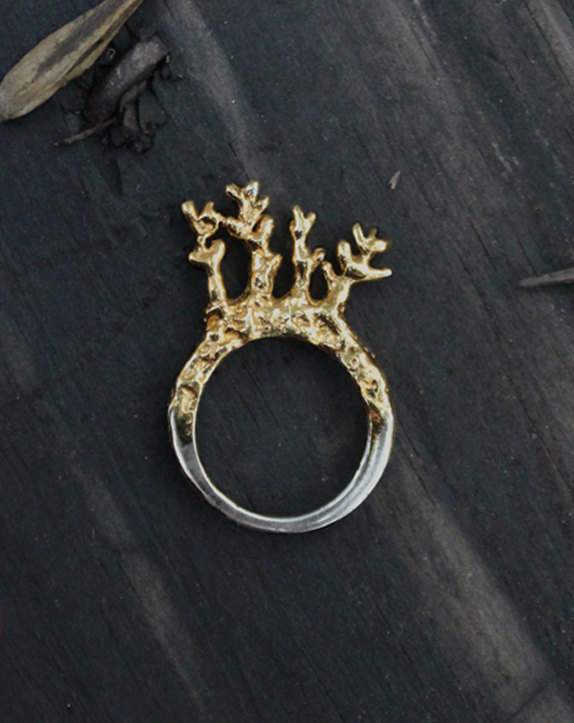 5 Twigs in a ring