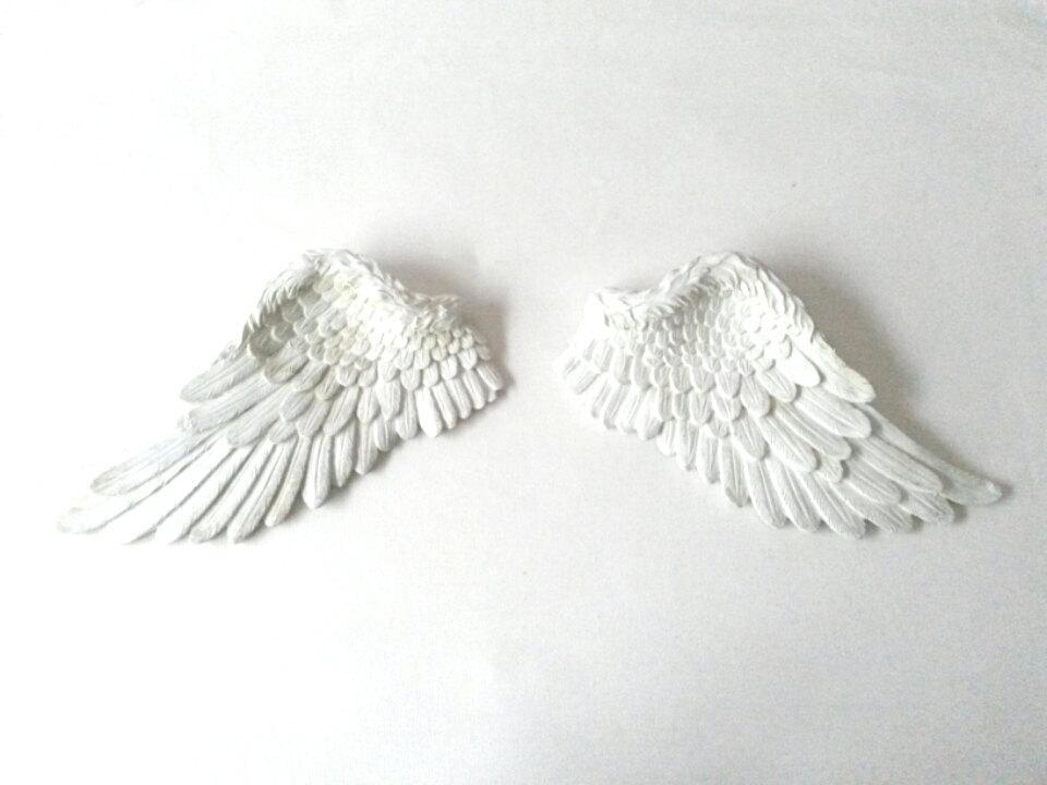 5 Angel wings
