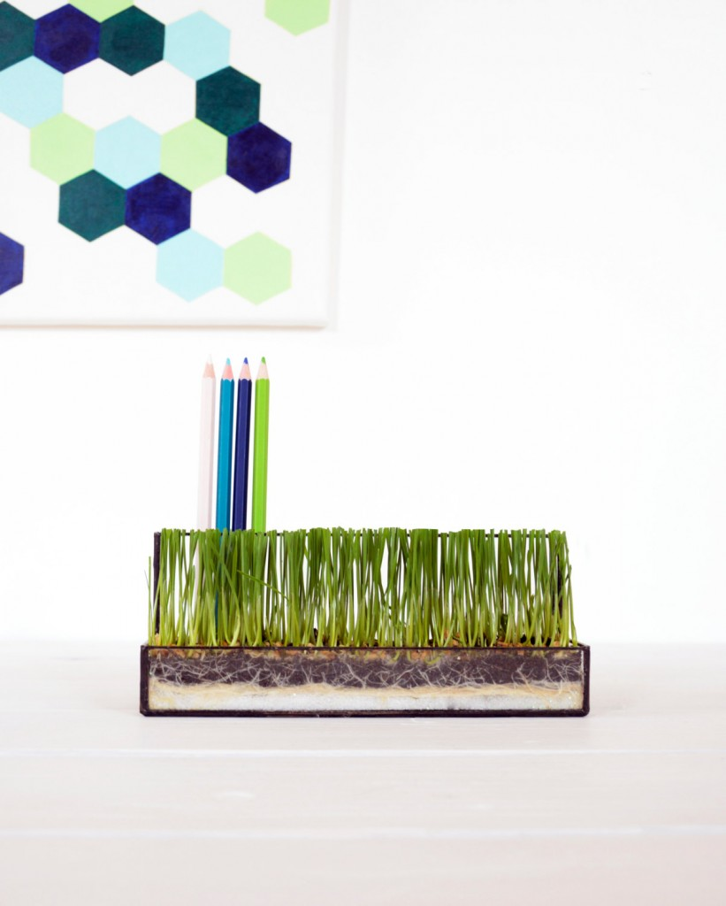 1 Pen Holder Glass Terrarium