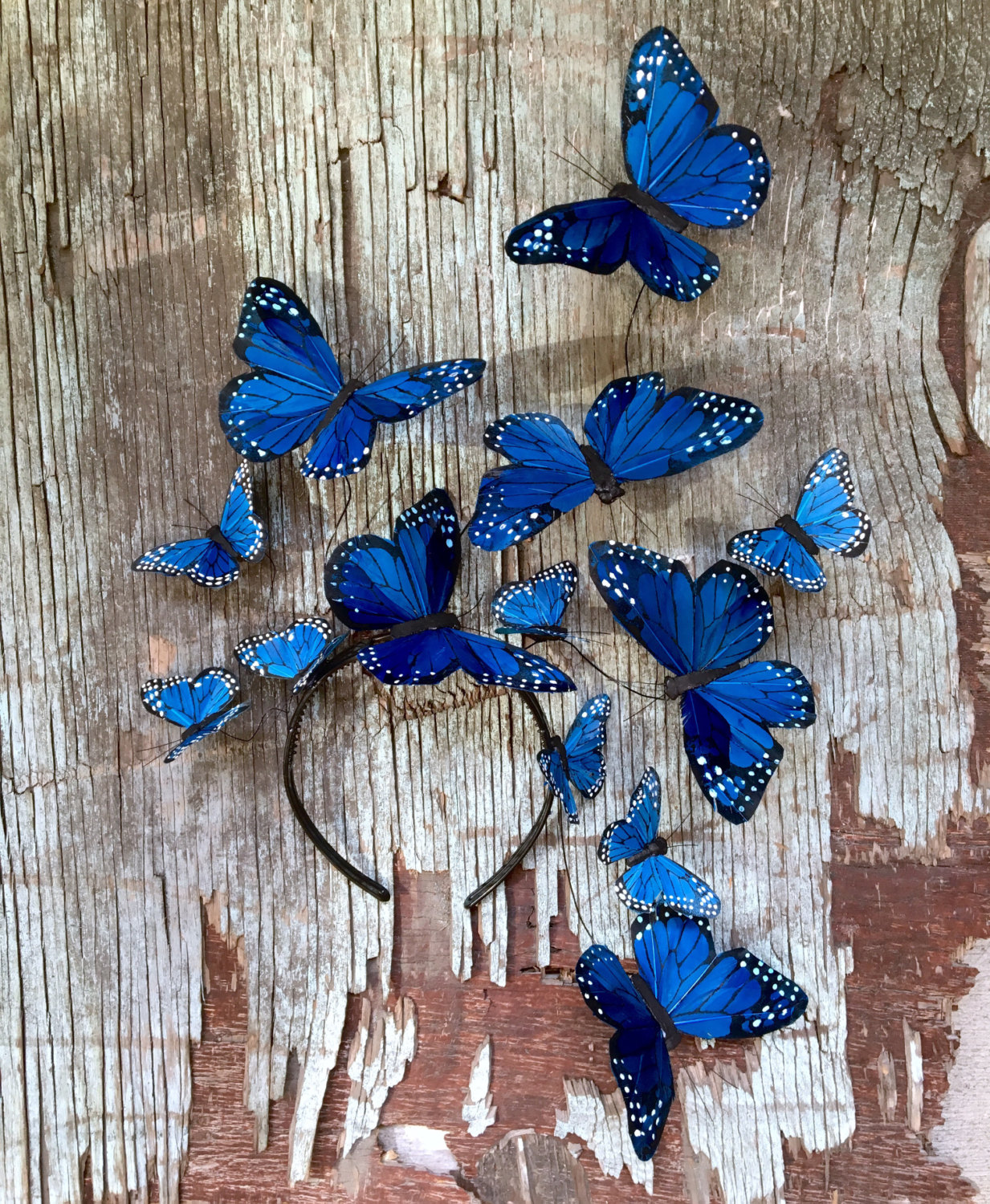 5 Wild Blue Yonder Monarch Butterfly Fascinator