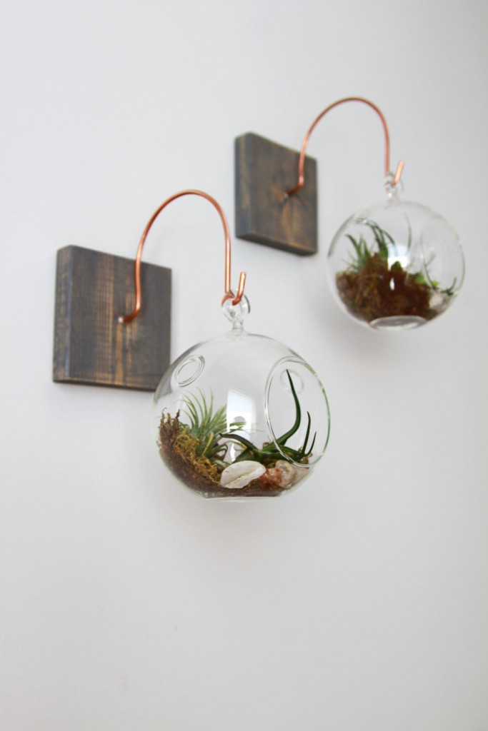 03 Wood and Copper Mount with Terrarium