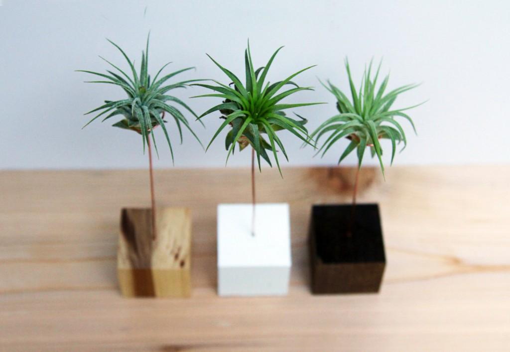 4 Palm Tree Wood Block