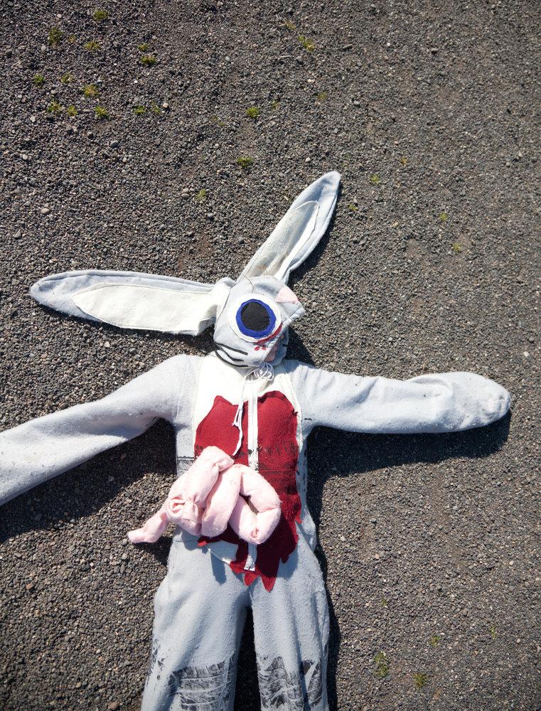Roadkill Bunny